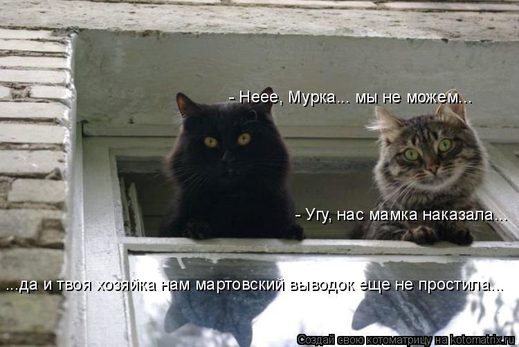 Котоматрица: - Угу, нас мамка наказала... - Неее, Мурка... мы не можем... ...да и твоя хозяйка нам мартовский выводок еще не простила...