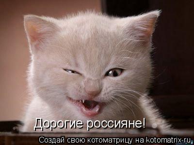 Котоматрица: Дорогие россияне!