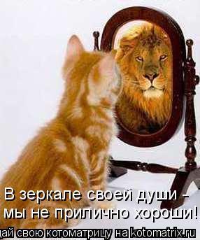 Котоматрица: В зеркале своей души - мы не прилично хороши!