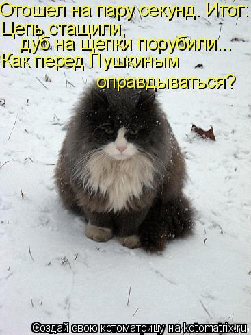 Котоматрица: Отошел на пару секунд. Итог: Цепь стащили,  дуб на щепки порубили... Как перед Пушкиным  оправдываться?