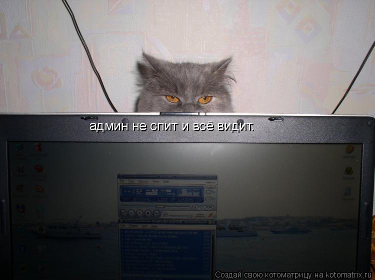 Котоматрица: админ не спит и всё видит.
