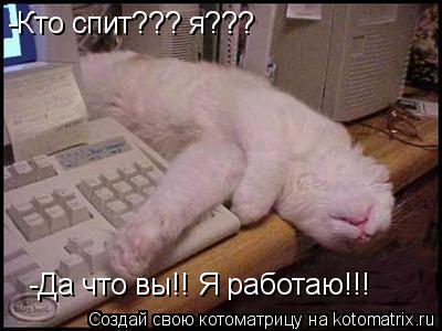 Котоматрица: -Кто спит??? я???  -Да что вы!! Я работаю!!!