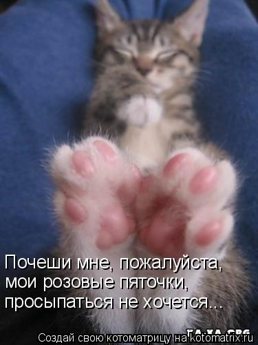 Котоматрица: Почеши мне, пожалуйста, мои розовые пяточки, просыпаться не хочется...