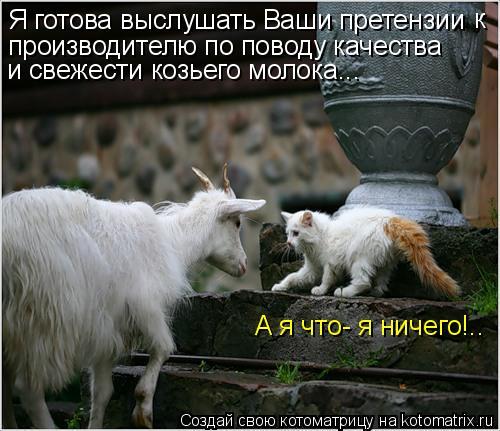 Котоматрица: Я готова выслушать Ваши претензии производителю по поводу качества и свежести козьего молока... к А я что- я ничего!..