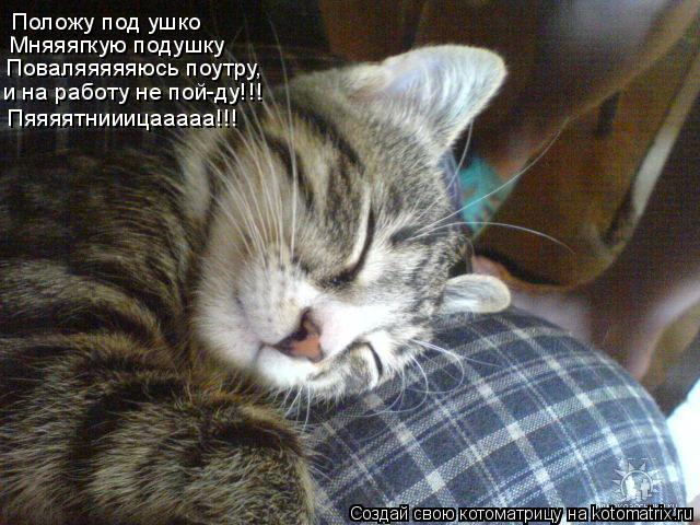 Котоматрица: Положу под ушко Мняяягкую подушку Поваляяяяяюсь поутру, и на работу не пой-ду!!! Пяяяятнииицааааа!!!