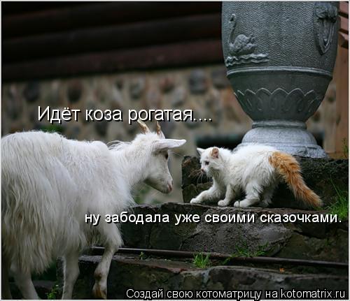 Котоматрица: Идёт коза рогатая.... ну забодала уже своими сказочками.