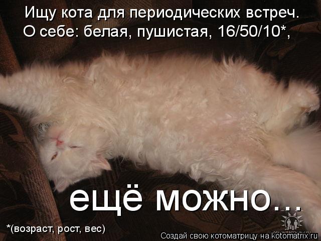 Котоматрица: Ищу кота для периодических встреч. *(возраст, рост, вес) О себе: белая, пушистая, 16/50/10*, ещё можно...