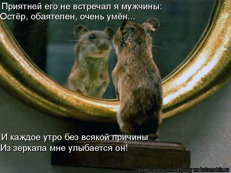 Котоматрица: Приятней его не встречал я мужчины: Остёр, обаятелен, очень умён... И каждое утро без всякой причины Из зеркала мне улыбается он!