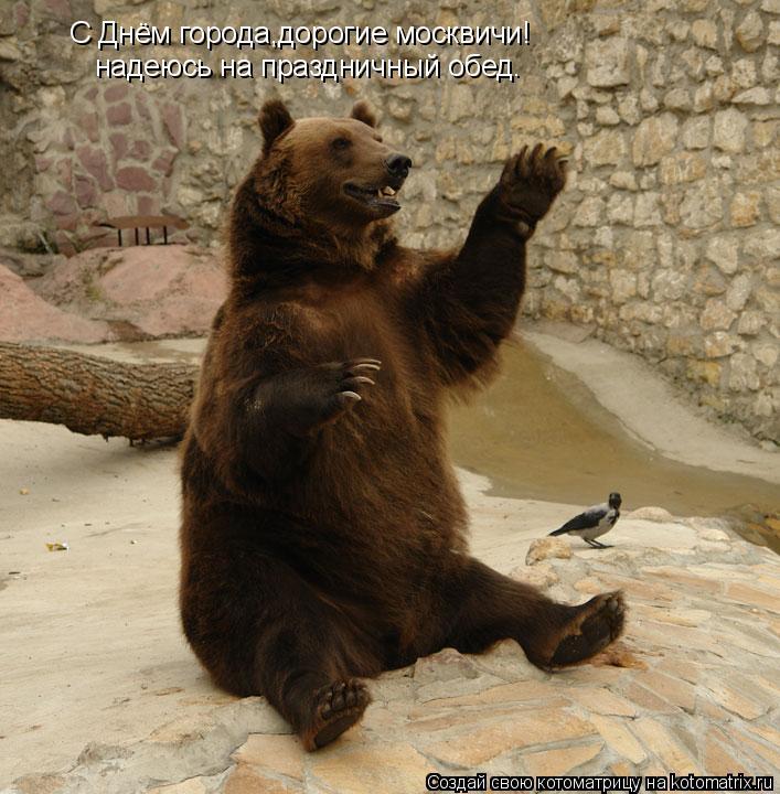 Котоматрица: С Днём города,дорогие москвичи! надеюсь на праздничный обед.
