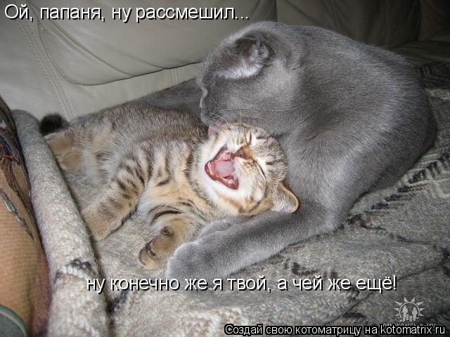 Котоматрица: Ой, папаня, ну рассмешил... ну конечно же я твой, а чей же ещё!