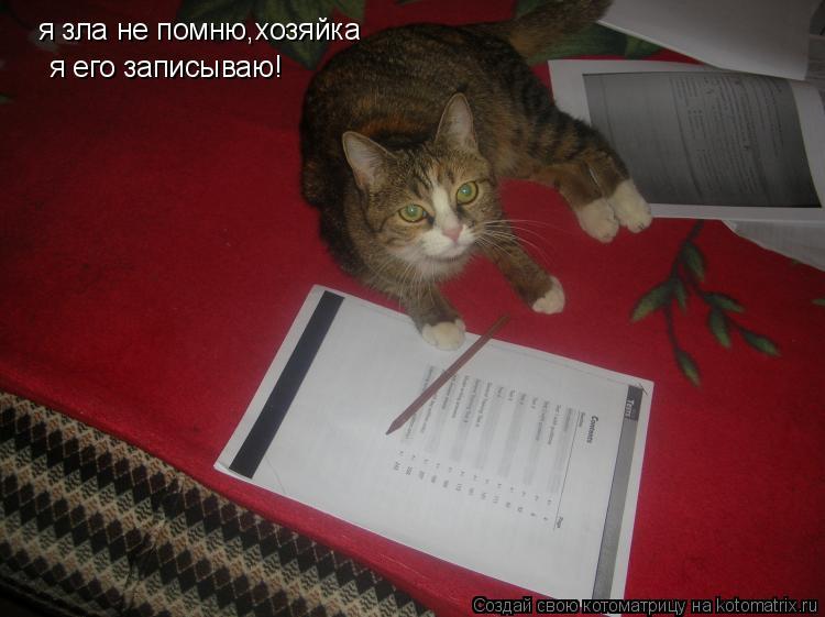 Котоматрица: я зла не помню,хозяйка я его записываю!