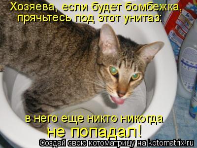 Котоматрица: Хозяева, если будет бомбежка, прячьтесь под этот унитаз: в него еще никто никогда не попадал!