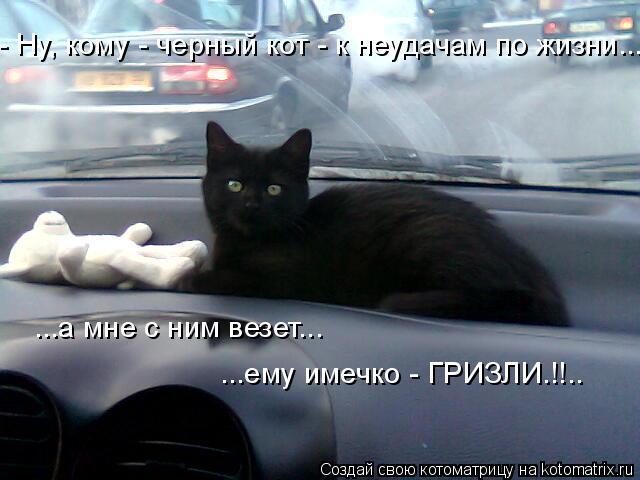 Котоматрица: - Ну, кому - черный кот - к неудачам по жизни... ...а мне с ним везет... ...ему имечко - ГРИЗЛИ.!!..