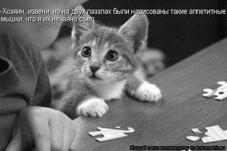 Котоматрица: -Хозяин, извени, но на двух паззлах были нарисованы такие аппетитные мышки, что я их нечаяно съел...