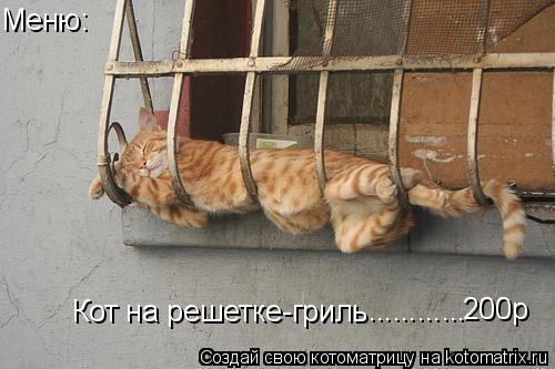 Котоматрица: Кот на решетке-гриль Меню: ............ 200р