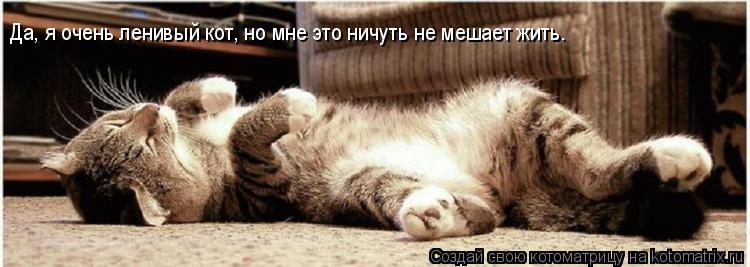 Котоматрица: Да, я очень ленивый кот, но мне это ничуть не мешает жить.