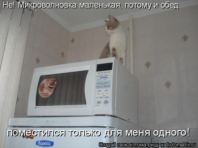 Котоматрица: Не! Микроволновка маленькая, потому и обед  поместился только для меня одного!