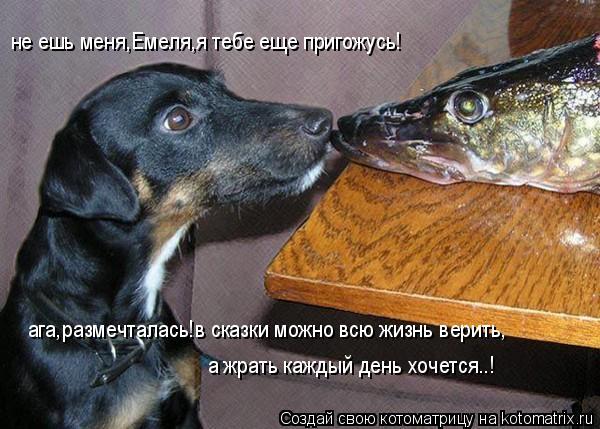 не ешь меня: