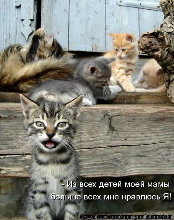 Котоматрица: - Из всех детей моей мамы больше всех мне нравлюсь Я!
