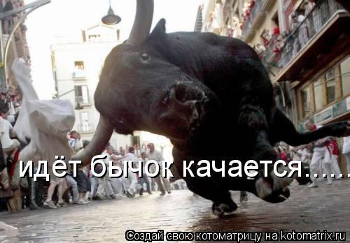 Котоматрица: идёт бычок качается......