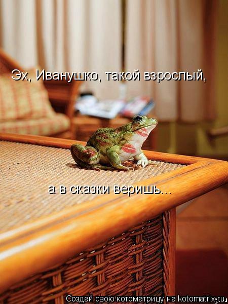 Котоматрица: Эх, Иванушко, такой взрослый, а в сказки веришь...