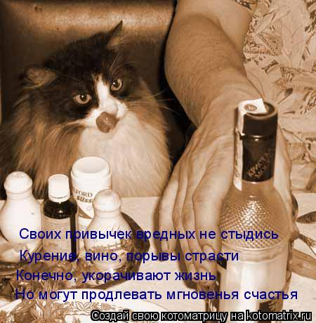 Котоматрица: Своих привычек вредных не стыдись Курение, вино, порывы страсти Конечно, укорачивают жизнь Но могут продлевать мгновенья счастья