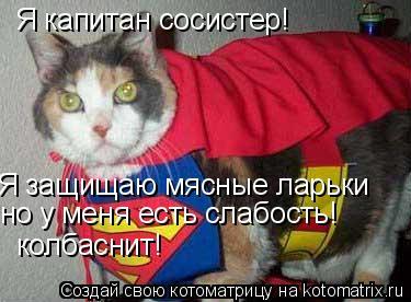 Котоматрица: Я капитан сосистер! Я защищаю мясные ларьки но у меня есть слабость! колбаснит!