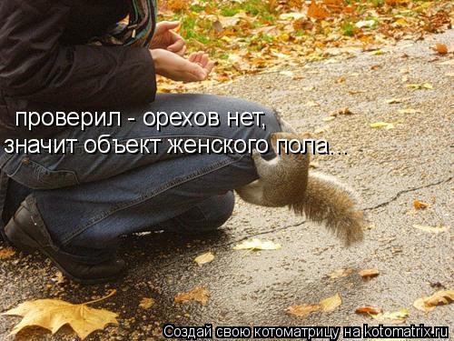 Котоматрица: проверил - орехов нет,  значит объект женского пола...