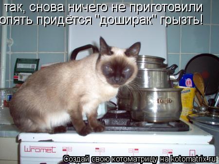 """Котоматрица: так, снова ничего не приготовили опять придётся """"доширак"""" грызть!"""