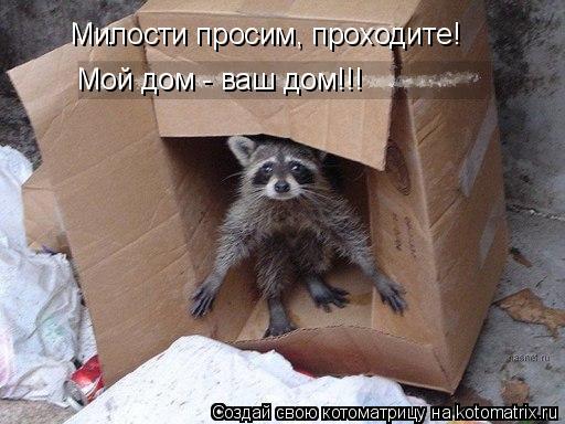 Котоматрица: Милости просим, проходите! Мой дом - ваш дом!!!
