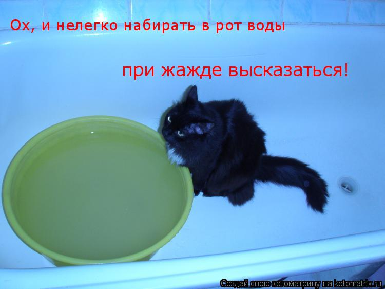 Котоматрица: Ох, и нелегко набирать в рот воды  при жажде высказаться!
