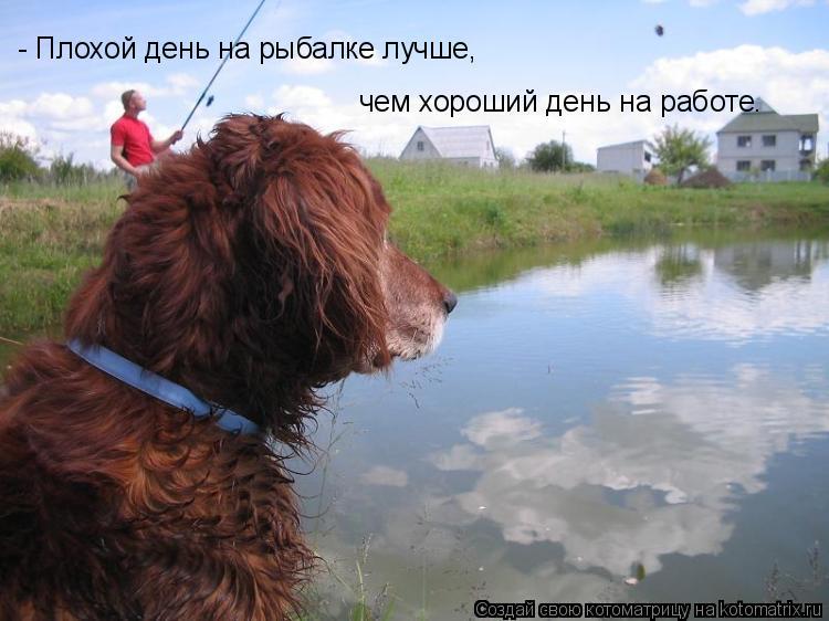 Котоматрица: - Плохой день на рыбалке лучше,  чем хороший день на работе.