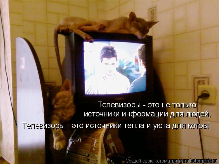 Котоматрица: Телевизоры - это не только источники информации для людей,  Телевизоры - это источники тепла и уюта для котов!