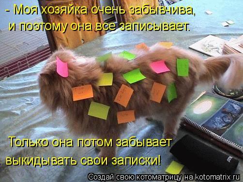 Котоматрица: - Моя хозяйка очень забывчива, и поэтому она все записывает. Только она потом забывает выкидывать свои записки!