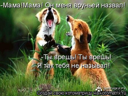 Котоматрица: -Мама!Мама! Он меня вруньей назвал! -Ты врешь! Ты врешь!  Я так тебя не называл!
