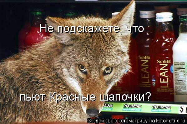 Котоматрица: Не подскажете, что пьют Красные шапочки?