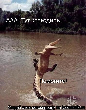 Котоматрица: ААА! Тут крокодилы! Помогите!