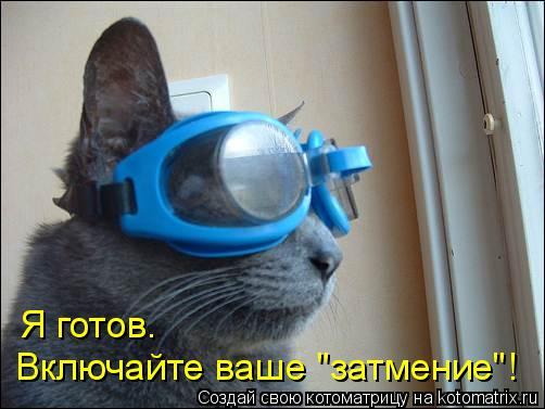 "Котоматрица: Я готов. Включайте ваше ""затмение""!"
