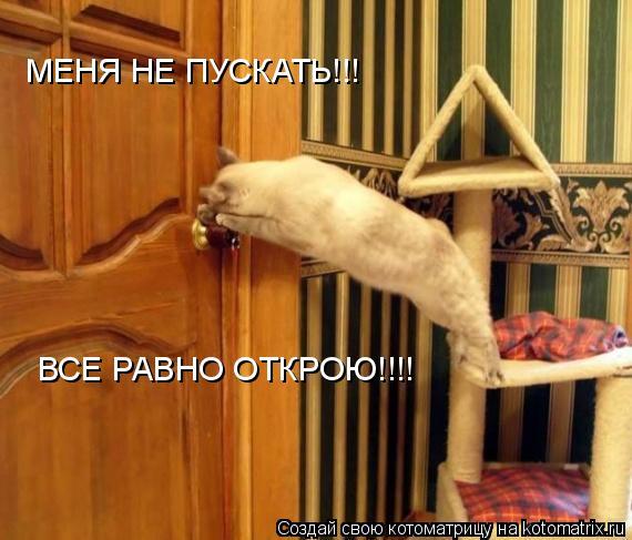 Котоматрица: МЕНЯ НЕ ПУСКАТЬ!!! ВСЕ РАВНО ОТКРОЮ!!!!