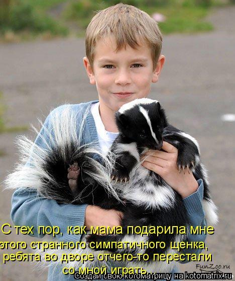 Котоматрица: С тех пор, как мама подарила мне этого странного симпатичного щенка, ребята во дворе отчего-то перестали со мной играть...