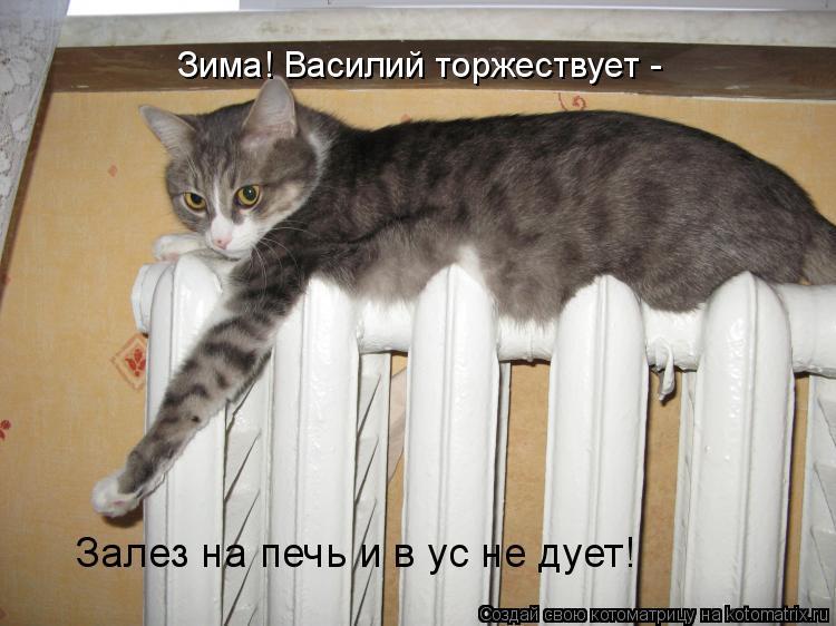 Котоматрица: Зима! Василий торжествует - Залез на печь и в ус не дует!