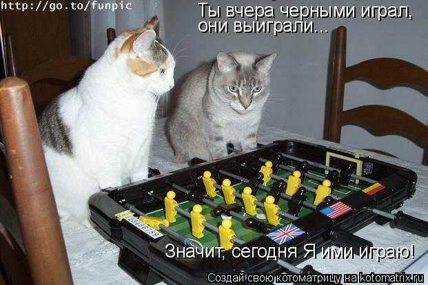 Котоматрица: Ты вчера черными играл, они выиграли... Значит, сегодня Я ими играю!