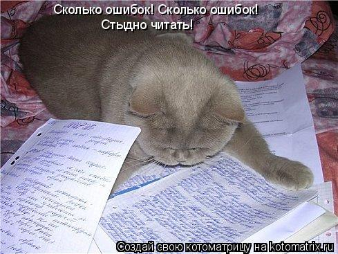 Котоматрица: Сколько ошибок! Сколько ошибок! Стыдно читать!