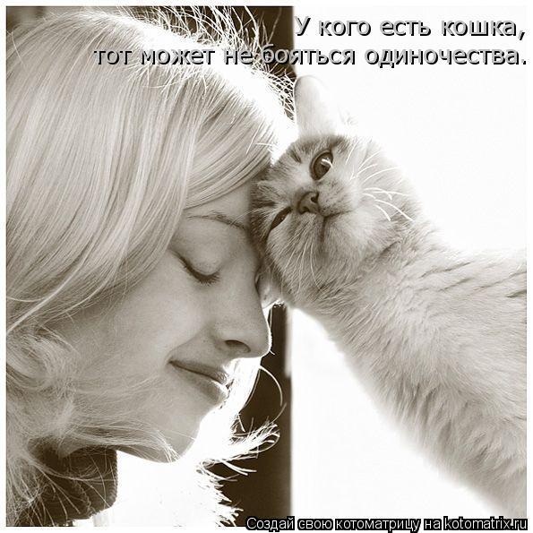 Котоматрица: У кого есть кошка, тот может не бояться одиночества.