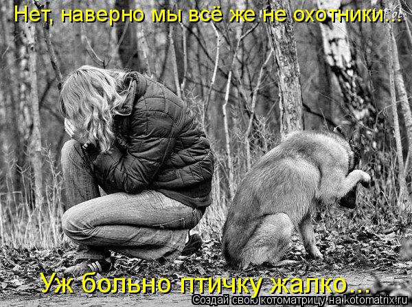 Котоматрица: Уж больно птичку жалко... Нет, наверно мы всё же не охотники...