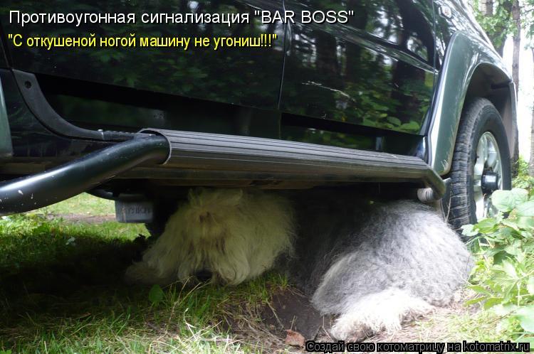 """Котоматрица: Противоугонная сигнализация """"BAR BOSS"""" """"С откушеной ногой машину не угониш!!!"""""""