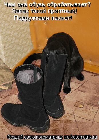 Котоматрица: Чем она обувь обрабатывает? Запах такой приятный! Подружками пахнет!