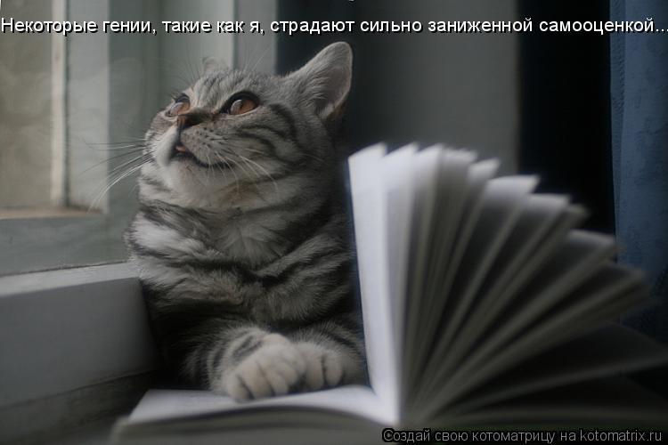 Котоматрица: Некоторые гении, такие как я, страдают сильно заниженной самооценкой...