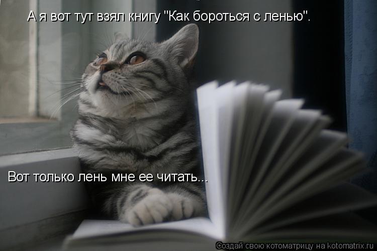 """Котоматрица: А я вот тут взял книгу """"Как бороться с ленью"""".  Вот только лень мне ее читать..."""