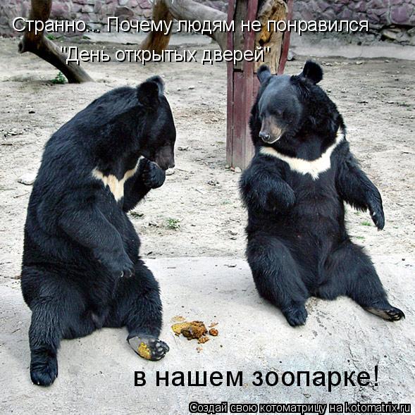 """Котоматрица: Странно... Почему людям не понравился  """"День открытых дверей"""" в нашем зоопарке!"""